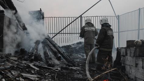 Пожарные ликвидировали 2 крупных лесных пожара под Воронежем