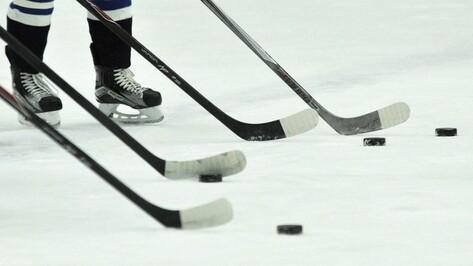 Хоккеисты «Россоши» победили «Северских волков» на выезде