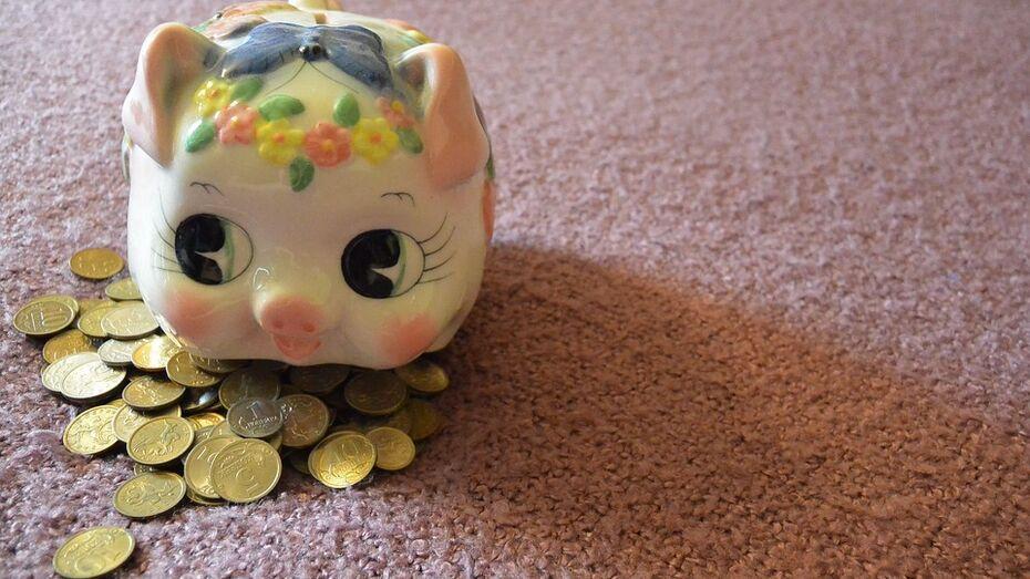 Воронежская область поднялась на 8 позиций в рейтинге благосостояния семей
