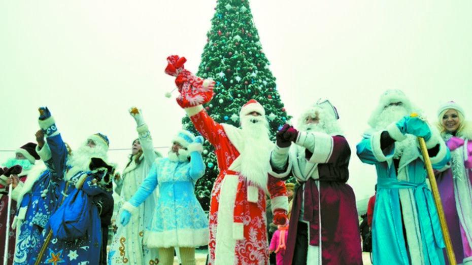 Сколько стоит Дед Мороз и его внучка