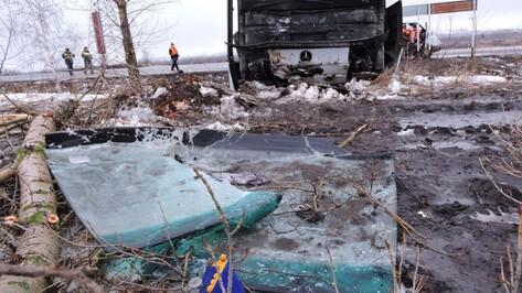 В Воронежской области автобус вылетел в кювет: 12 пассажиров пострадали