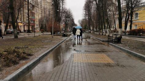 Воронежцев ждет пасмурная неделя