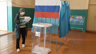 Советская дисциплина. Как голосуют в одном из самых маленьких воронежских поселений