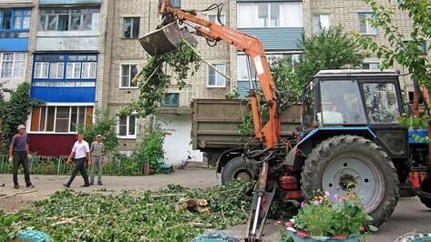 В Бутурлиновке спилили 30-летние тополя