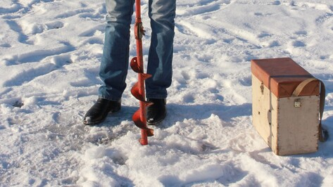 Воронежские спасатели за сутки 69 раз напомнили отдыхающим об опасностях льда