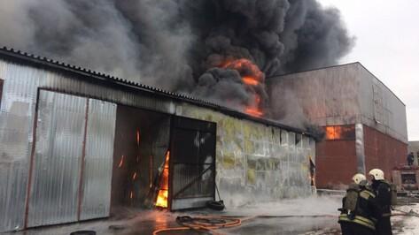 Полиция разберется в причинах пожара на складе в Советском районе Воронежа