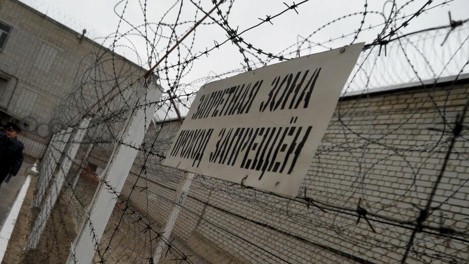 В Воронежской области с начала года раскрыли 50 преступлений в составе организованных групп