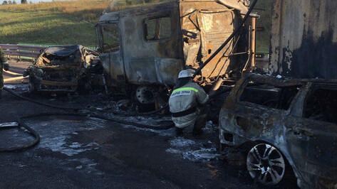 Число пострадавших в ДТП с 34 машинами в Воронежской области выросло до 5