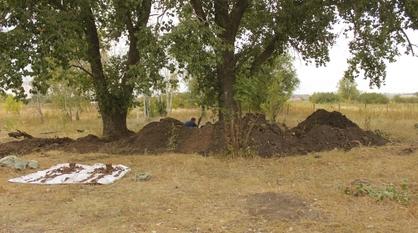 В Воронежской области нашли захоронение экипажа сбитого в 1942 году самолета «Бостон-3»