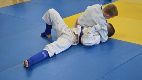 Рамонцы завоевали 9 медалей на областном турнире по джиу-джитсу