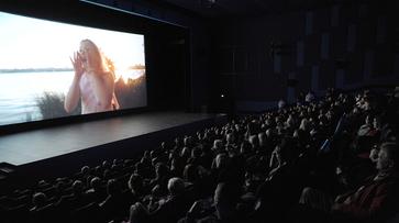 «Ночь кино» пройдет в Воронеже на 3 площадках