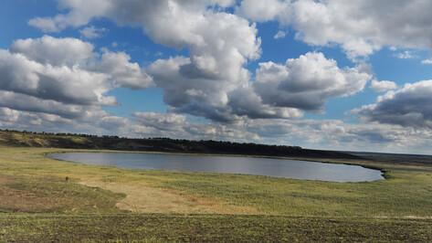 Глава Воронежской области: развитие сел начнут с «территорий потенциального роста»