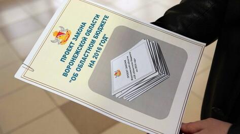 Воронежская облдума одобрила проект бюджета региона на 2016 год в первом чтении
