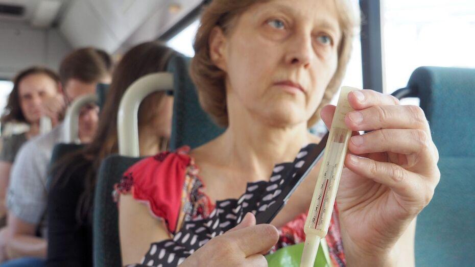 Воронежские спасатели предупредили о сильной жаре