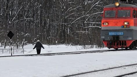 Железнодорожники открыли новый вид абонементного билета для воронежских пассажиров