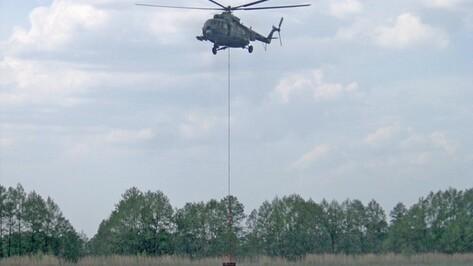 В Воронеже летчики МЧС и МВД потренировались в тушении лесных пожаров