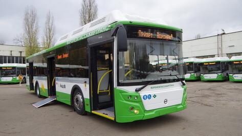 Маршруты №6 и №14В изменят из-за выхода на линию новых автобусов