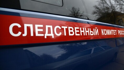 СКР: найденный на пожаре в Воронежской области пенсионер стал жертвой убийства