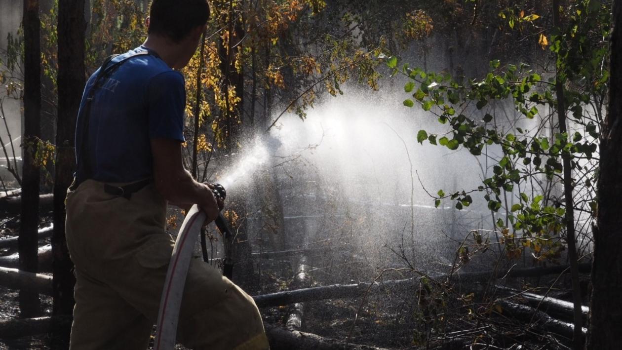 Хроника РИА «Воронеж». Тушение ландшафтного пожара в микрорайоне Отрожка