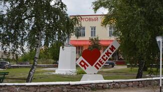 Петропавловские Пески в третий раз поучаствуют в областном конкурсе «Самое красивое село»