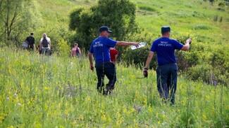 Поисковики начали сбор подписей в защиту отца погибшего под Воронежем малыша