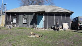 Заброшенные хутора: как пустеют воронежские деревни. Васильевка Рамонского района