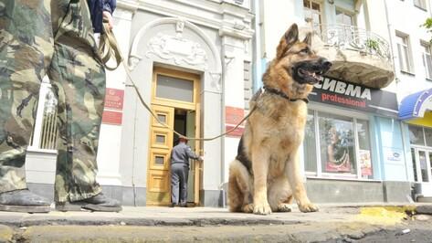 Массовые звонки о минировании затронули почти всю Россию