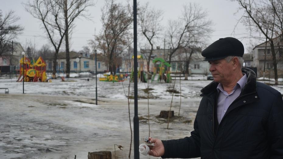Вандалы разбили светильники в Центральном парке Нижнедевицка