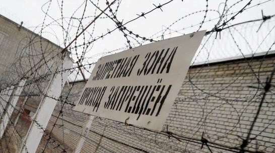 Спрятанные в куске детского мыла 9 сим-карт попытались передать в Борисоглебскую колонию