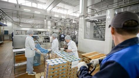 Воронежский молокозавод увеличил производство на 20% после введения санкций