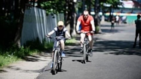 Обновленный воронежский спорткомплекс «Олимпик» сможет принимать всероссийские соревнования