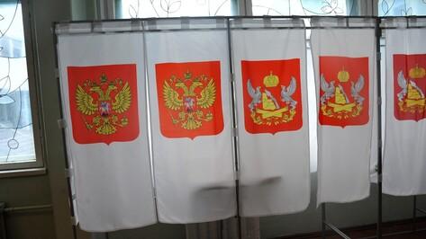 На президентских выборах-2018 открепительные удостоверения заменят заявлениями