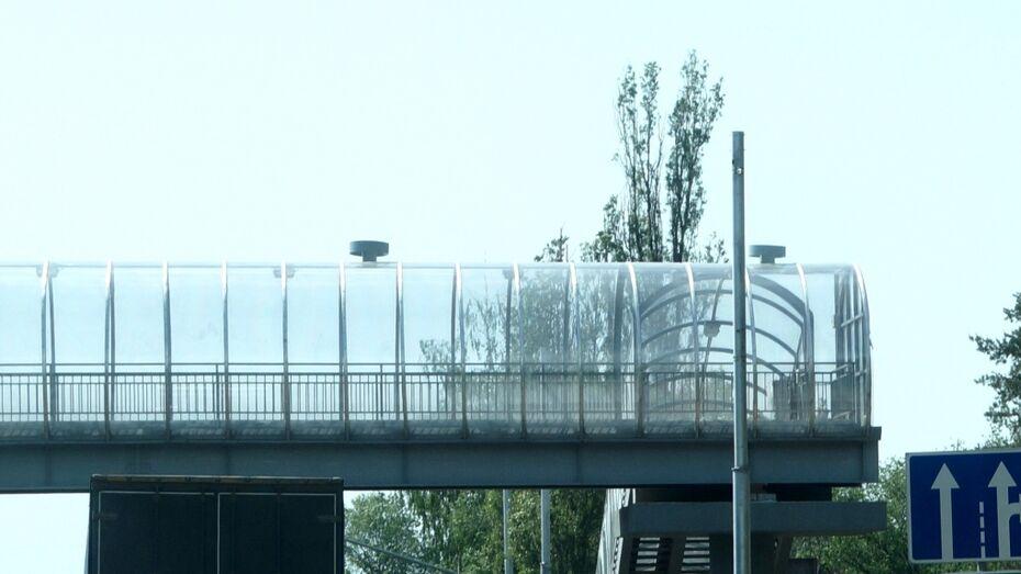 Дорожники начали строительство 3 надземных переходов в Анне