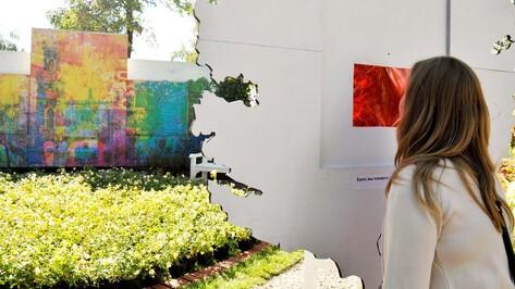 На выставке «Воронеж – город-сад» пройдет световое шоу