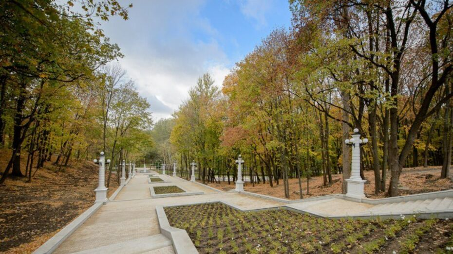 Второй этап реконструкции Центрального парка Воронежа решит природоохранные вопросы