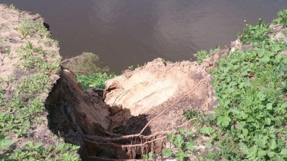 Разрушающийся берег Дона в Воронежской области укрепят к 2019 году