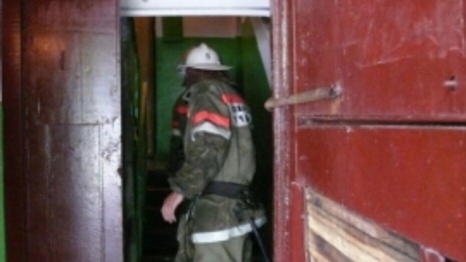 В Воронеже погибла хозяйка горящей квартиры