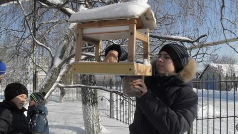 Нижнедевицкие школьники провели акцию «Покормите птиц зимой»