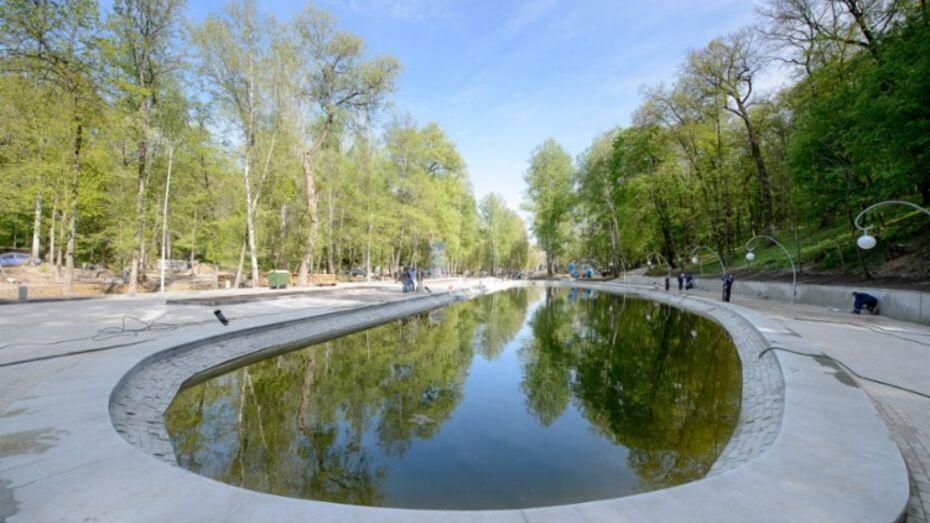В Центральном парке Воронежа появятся барбекю-поляна и трасса для маунтинбайка
