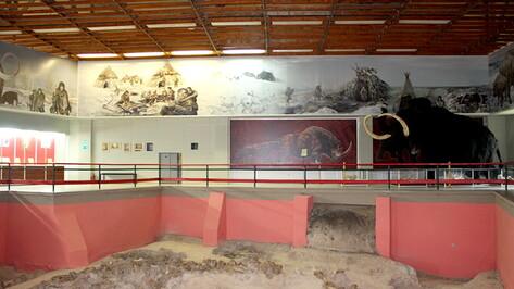 Музей-заповедник «Костенки» под Воронежем откроет 3 выставки в День археолога