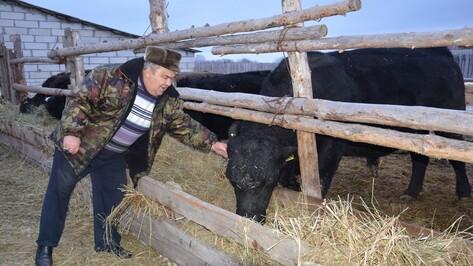 Поворинская семья получила 2,3 млн рублей на развитие животноводческой фермы