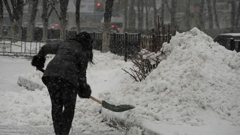 К уборке снега в Воронеже привлекли 1,1 тыс волонтеров