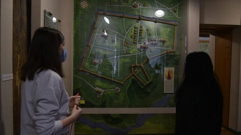 «Культурный слой Воронежа» покажут в краеведческом музее
