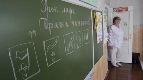 Воронежские дети присоединятся к «Российскому движению школьников»