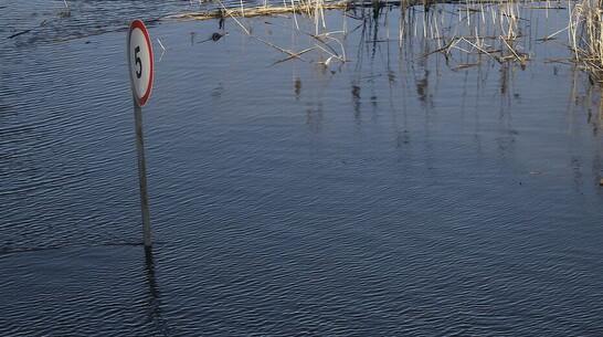 Верхнемамонцев предупредили о перерывах в работе наплавного моста на время паводка