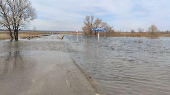 Частично ушел под воду мост через реку Черная Калитва в селе Воронежской области