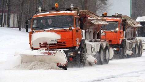 На уборку снега в Воронеже в ночь на 6 января вышли 184 машины