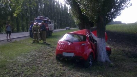 В Воронежской области женщина за рулем иномарки врезалась в дерево, пострадали два человека