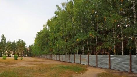 В Воронеже вместо аварийных домов появятся новые зеленые зоны