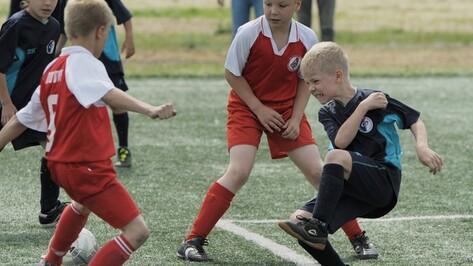 Воронеж впервые принял зональный турнир российской Детской футбольной лиги